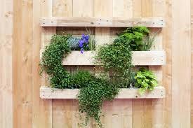Tout sur le jardinage urbain